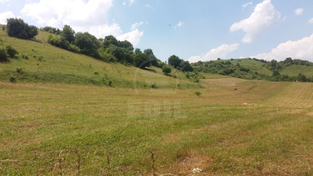 Land for sale, TECJ209711FLO-4