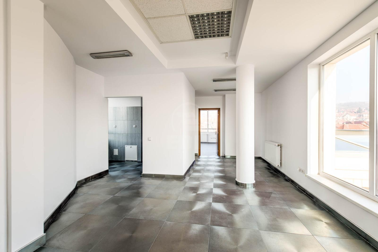 Office for sale 17 rooms, BICJ272190-4