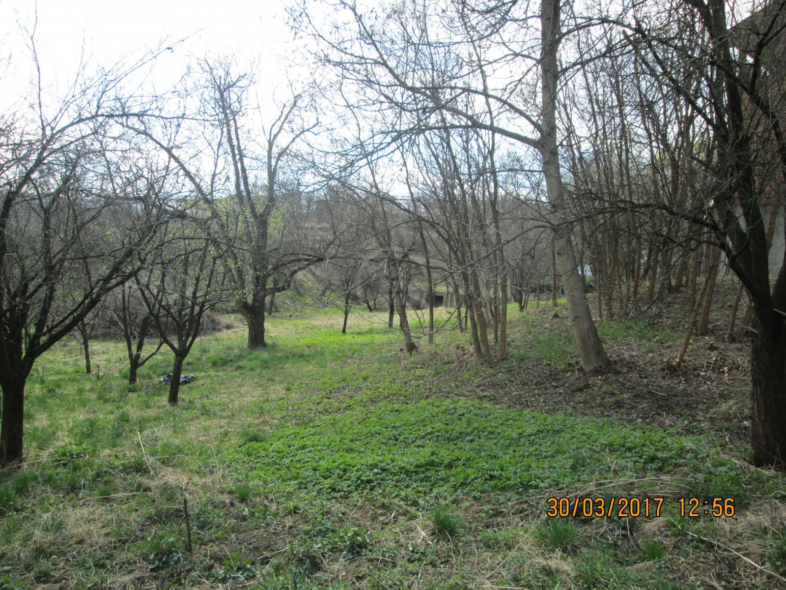 Land for sale, TECJ274174-1
